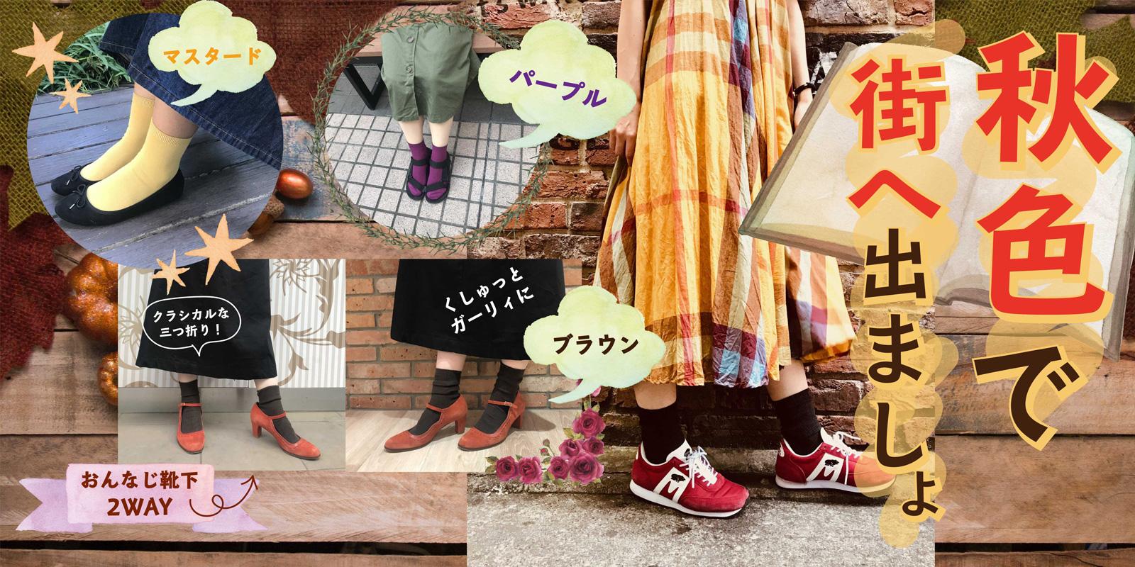 秋色ソックスの写真